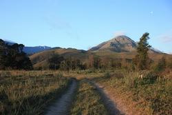 Greyton nature scene