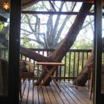The Treehouse Greyton
