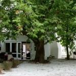 Cedrics Country Lodge Greyton patios